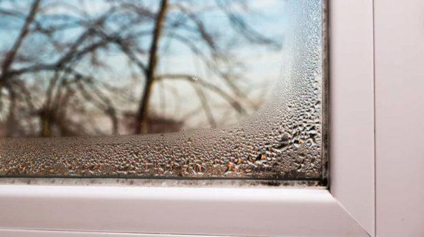 Quelle solution à l'humidité maison?