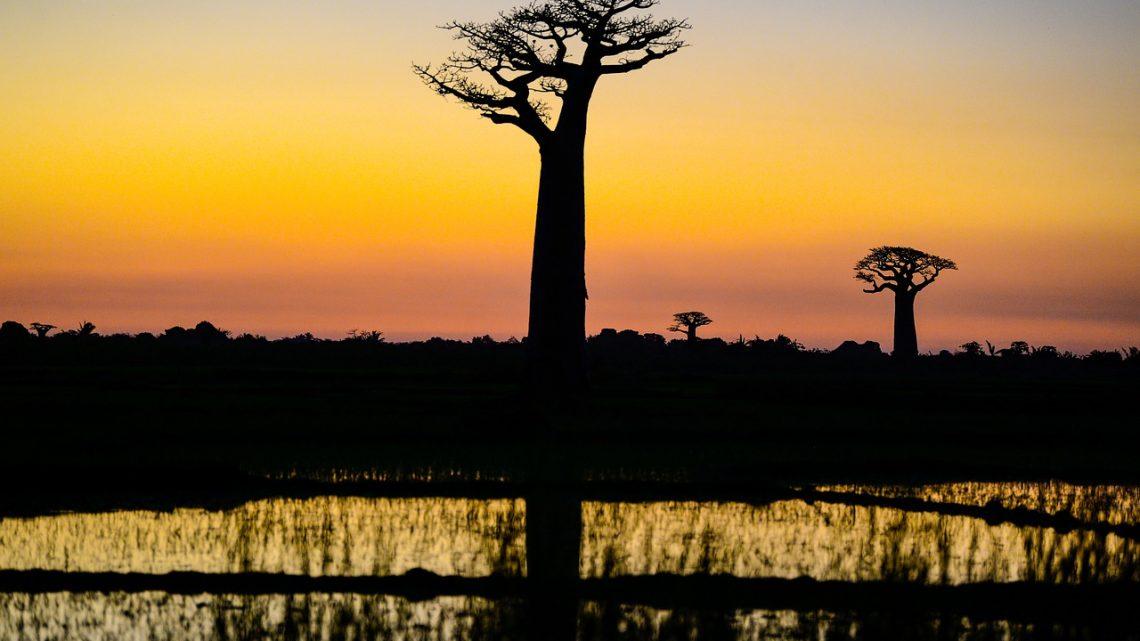 4 lieux clés à voir pour une visite culturelle à Madagascar